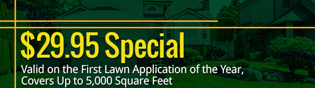 $29.95 Special - Offer Valid on the First Lawn Application of the Year, Covers Up to 5,000 Square Feet